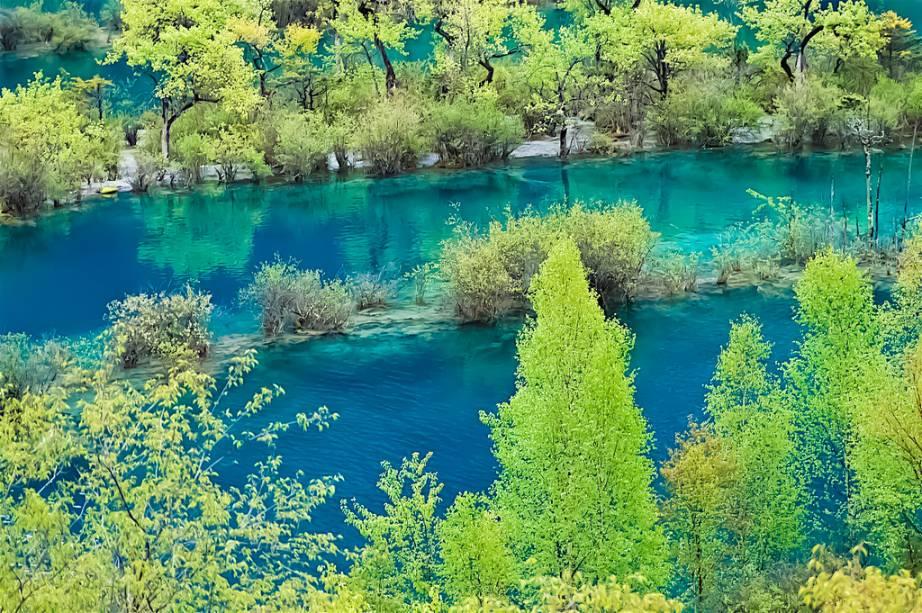 """<strong>Jiuzhaigou, Sichuan, China</strong> O Vale Jiuzhaigou é um popular destino para turistas com suas belíssimas cascatas, lagos azuis e montanhas. O cenário durante o outono chega a ser emocionante.<a href=""""https://www.booking.com/searchresults.pt-br.html?aid=332455&lang=pt-br&sid=eedbe6de09e709d664615ac6f1b39a5d&sb=1&src=index&src_elem=sb&error_url=https%3A%2F%2Fwww.booking.com%2Findex.pt-br.html%3Faid%3D332455%3Bsid%3Deedbe6de09e709d664615ac6f1b39a5d%3Bsb_price_type%3Dtotal%26%3B&ss=China&ssne=Ilhabela&ssne_untouched=Ilhabela&checkin_monthday=&checkin_month=&checkin_year=&checkout_monthday=&checkout_month=&checkout_year=&no_rooms=1&group_adults=2&group_children=0&from_sf=1&ss_raw=China+&ac_position=0&ac_langcode=xb&dest_id=44&dest_type=country&search_pageview_id=a5a173e6a6c40073&search_selected=true&search_pageview_id=a5a173e6a6c40073&ac_suggestion_list_length=5&ac_suggestion_theme_list_length=0"""" target=""""_blank"""" rel=""""noopener""""><em>Busque hospedagens na China no Booking.com</em></a>"""