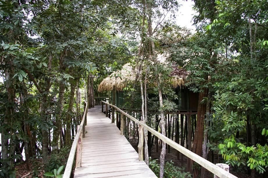 """<a href=""""http://viajeaqui.abril.com.br/cidades/br-am-manaus/onde-ficar/hospedagem-na-selva"""" rel=""""Hotel de selva na Amazônia"""" target=""""_blank""""><strong>Hotel de selva na Amazônia</strong></a>Passeio de canoa, focagem de jacarés, pesca de piranhas e caminhadas na floresta integram o pacote de três noites no <a href=""""http://viajeaqui.abril.com.br/estabelecimentos/br-am-manaus-hospedagem-juma-lodge/"""" rel=""""Amazon Juma Lodge"""" target=""""_blank"""">Amazon Juma Lodge</a> (foto), all-inclusive que entretém a gurizada em clima de aventura na natureza. Inclui traslados.<strong>Quando:</strong> em 22 de janeiro<strong>Quem leva:</strong> <a href=""""http://pisa.tur.br/"""" rel=""""Pisa Trekking"""" target=""""_blank"""">Pisa Trekking</a><strong>Quanto:</strong> R$ 3463 (crianças de até 5 anos no quarto dos pais, grátis nohotel, mas pagam o aéreo; de 6 a 10anos, R$ 2003 por todo o pacote)"""