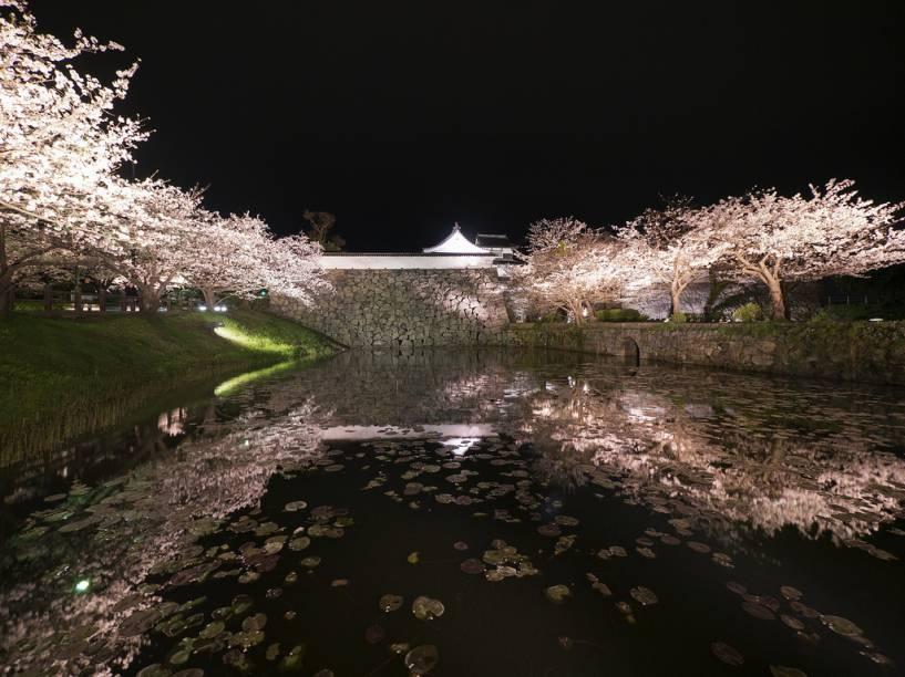 O parque Maizuru abriga as ruínas do Castelo de Fukuoka. Em torno do antigo fosso e suas muralhas, hoje florescem cerejeiras e ameixeiras