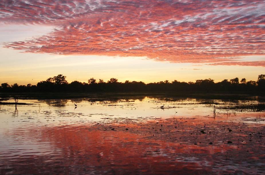 """<strong><a href=""""http://viajeaqui.abril.com.br/estabelecimentos/australia-darwin-atracao-parque-nacional-de-kakadu"""" target=""""_blank"""">Kakadu</a> - <a href=""""http://viajeaqui.abril.com.br/paises/australia"""" target=""""_blank"""">Austrália </a></strong>"""