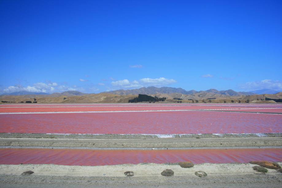 """<strong>Lac Rose (Retba), Senegal</strong> O lago Retba, também conhecido como Lago Rosa, tem seu nome associado à cor de suas águas, causadas por um tipo de alga. Seu alto grau de salinidade é comparável ao do Mar Morto, entre <a href=""""http://viajeaqui.abril.com.br/paises/jordania"""">Jordânia </a>e Israel. <a href=""""https://www.booking.com/searchresults.pt-br.html?aid=332455&lang=pt-br&sid=eedbe6de09e709d664615ac6f1b39a5d&sb=1&src=searchresults&src_elem=sb&error_url=https%3A%2F%2Fwww.booking.com%2Fsearchresults.pt-br.html%3Faid%3D332455%3Bsid%3Deedbe6de09e709d664615ac6f1b39a5d%3Bclass_interval%3D1%3Bdest_id%3D44%3Bdest_type%3Dcountry%3Bdtdisc%3D0%3Bgroup_adults%3D2%3Bgroup_children%3D0%3Binac%3D0%3Bindex_postcard%3D0%3Blabel_click%3Dundef%3Bno_rooms%3D1%3Boffset%3D0%3Bpostcard%3D0%3Braw_dest_type%3Dcountry%3Broom1%3DA%252CA%3Bsb_price_type%3Dtotal%3Bsearch_selected%3D1%3Bsrc%3Dindex%3Bsrc_elem%3Dsb%3Bss%3DChina%3Bss_all%3D0%3Bss_raw%3DChina%3Bssb%3Dempty%3Bsshis%3D0%3Bssne_untouched%3DIlhabela%26%3B&ss=Senegal&ssne=China&ssne_untouched=China&checkin_monthday=&checkin_month=&checkin_year=&checkout_monthday=&checkout_month=&checkout_year=&no_rooms=1&group_adults=2&group_children=0&highlighted_hotels=&from_sf=1&ss_raw=Senegal+&ac_position=0&ac_langcode=xb&dest_id=187&dest_type=country&search_pageview_id=6aa473eadb160068&search_selected=true&search_pageview_id=6aa473eadb160068&ac_suggestion_list_length=5&ac_suggestion_theme_list_length=0"""" target=""""_blank"""" rel=""""noopener""""><em>Busque hospedagens em Senegal no Booking.com</em></a>"""