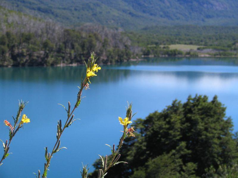 Lago Machónico - - Ruta de los Siete Lagos - Argentina - Flickr - cucundra