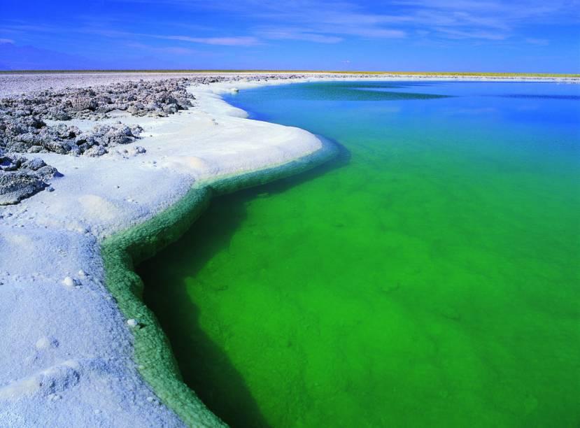 """Esta lagoa verde-esmeralda no <a href=""""http://viajeaqui.abril.com.br/estabelecimentos/chile-san-pedro-de-atacama-atracao-salar-do-atacama"""" rel=""""Salar de Atacama"""" target=""""_blank""""><strong>Salar de Atacama</strong></a> é tão salgada que o corpo não afunda, assim como no Mar Morto, em Israel. Note que as margens já foram cristalizadas pelo sal"""