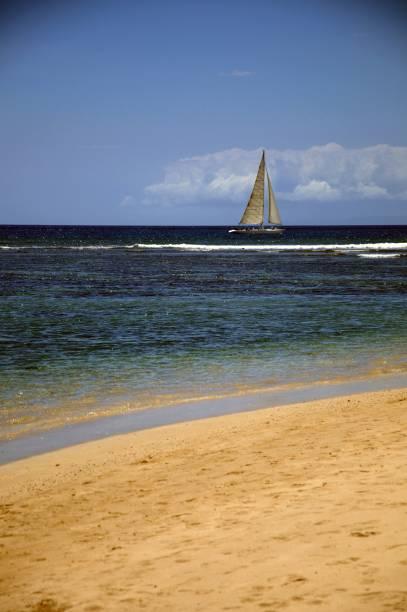 <strong>Domínio dos Estados Unidos</strong><br />Em 1900, os EUA, que comandavam as relações comerciais do Havaí, incluíram o arquipélago dentro de seu domínio político e territorial