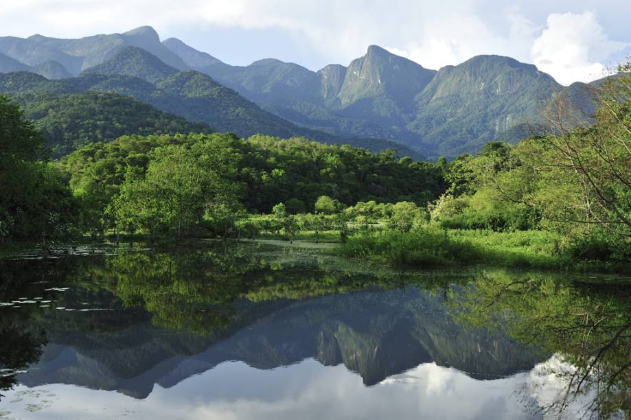 Os alagados da <strong>Reserva Ecológica Guapiaçu</strong>, no município de Cachoeiras de Macacu, têm continuidade com a <strong>Mata Atlântica</strong> de tabuleiro que se estendem até o Parque Estadual dos Três Picos, na Serra dos Órgãos