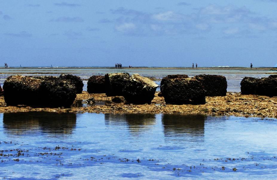 Ponta Verde, em Maceió, tem grande incidência de algas marinhas