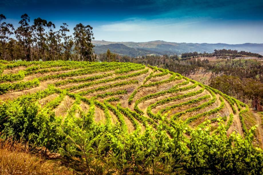 """<strong>Ilha da Madeira, <a href=""""http://viajeaqui.abril.com.br/paises/portugal"""" rel=""""Portugal"""" target=""""_self"""">Portugal</a></strong>Com uma paisagem marcada por encostas íngremes, que formam paisagens peculiares, a Ilha da Madeira produziu um vinho de identidade própria e extremamente saboroso. De sabor adocicado e alto teor alcoólico, o Vinho da Madeira se assemelha ao Vinho do Porto. Na região, vale esticar até a floresta Laurissilva, tombada como Patrimônio da Humanidade pela Unesco<em><a href=""""http://www.booking.com/region/pt/madeira.pt-br.html?aid=332455&label=viagemabril-vinicolas-da-europa"""" rel=""""Veja preços de hotéis na Ilha da Madeira no Booking.com"""" target=""""_self"""">Veja preços de hotéis na Ilha da Madeira no Booking.com</a></em>"""
