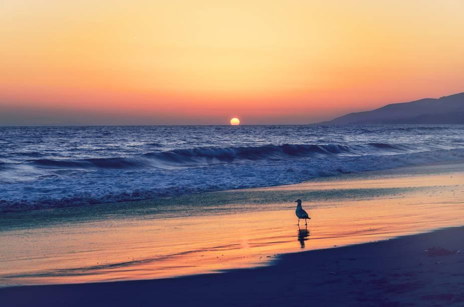 """<strong>12. <a href=""""https://www.youtube.com/watch?v=JXmUYdOVJtc"""" rel=""""Beyoncé – Broken-Hearted Girl"""" target=""""_blank"""">Beyoncé – Broken-Hearted Girl</a> - Praia de Malibu, Califórnia, <a href=""""http://viajeaqui.abril.com.br/paises/estados-unidos"""" rel=""""Estados Unidos"""" target=""""_self"""">Estados Unidos</a></strong>                        A praia onde o clipe foi filmado, na influente cidade de <strong>Malibu</strong>, é ponto de encontro de jovens e de muitas estrelas de Hollywood. Mais a cara da Beyoncé impossível"""