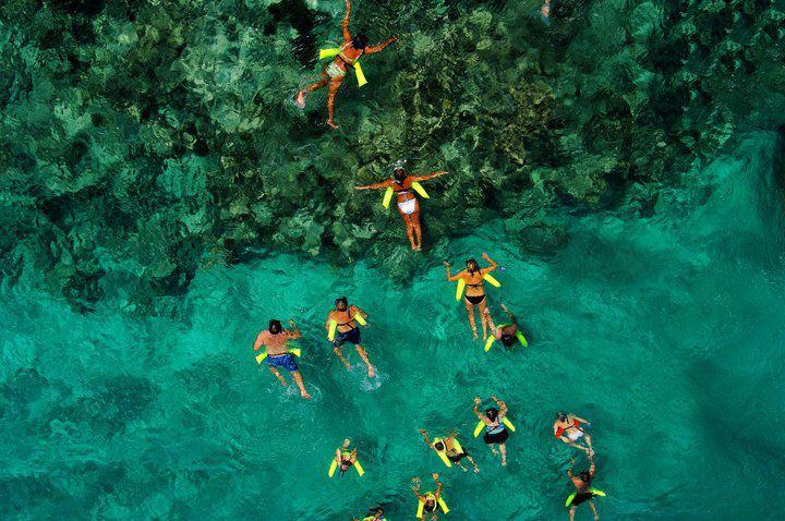 Mergulho junto aos recifes de corais no Marinarium