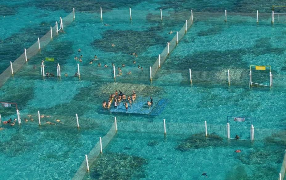 Área de mergulho com arraias e tubarões do Marinarium