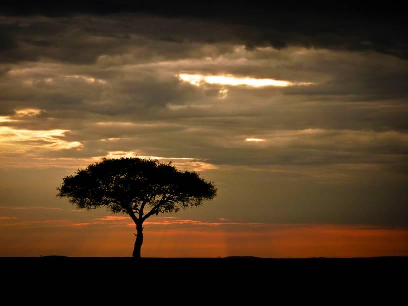 """<strong>Parque Nacional Masai Mara, Quênia</strong> Não parece uma paisagem do Rei Leão? O Masai Mara é um dos destinos de safári clássicos das savanas africanas, junto a outros parques de <a href=""""http://viajeaqui.abril.com.br/paises/tanzania"""">Tanzânia </a>e <a href=""""http://viajeaqui.abril.com.br/paises/quenia"""">Quênia</a>, como o Serengeti e Tsavo. <a href=""""https://www.booking.com/searchresults.pt-br.html?aid=332455&lang=pt-br&sid=eedbe6de09e709d664615ac6f1b39a5d&sb=1&src=searchresults&src_elem=sb&error_url=https%3A%2F%2Fwww.booking.com%2Fsearchresults.pt-br.html%3Faid%3D332455%3Bsid%3Deedbe6de09e709d664615ac6f1b39a5d%3Bclass_interval%3D1%3Bdest_id%3D187%3Bdest_type%3Dcountry%3Bdtdisc%3D0%3Bgroup_adults%3D2%3Bgroup_children%3D0%3Binac%3D0%3Bindex_postcard%3D0%3Blabel_click%3Dundef%3Bno_rooms%3D1%3Boffset%3D0%3Bpostcard%3D0%3Braw_dest_type%3Dcountry%3Broom1%3DA%252CA%3Bsb_price_type%3Dtotal%3Bsearch_selected%3D1%3Bsrc%3Dsearchresults%3Bsrc_elem%3Dsb%3Bss%3DSenegal%3Bss_all%3D0%3Bss_raw%3DSenegal%3Bssb%3Dempty%3Bsshis%3D0%3Bssne_untouched%3DChina%26%3B&ss=Qu%C3%AAnia&ssne=Senegal&ssne_untouched=Senegal&checkin_monthday=&checkin_month=&checkin_year=&checkout_monthday=&checkout_month=&checkout_year=&no_rooms=1&group_adults=2&group_children=0&highlighted_hotels=&from_sf=1&ss_raw=Qu%C3%AAnia&ac_position=0&ac_langcode=xb&dest_id=109&dest_type=country&search_pageview_id=a5a17400ad32001d&search_selected=true&search_pageview_id=a5a17400ad32001d&ac_suggestion_list_length=3&ac_suggestion_theme_list_length=0"""" target=""""_blank"""" rel=""""noopener""""><em>Busque hospedagens em Quênia no Booking.com</em></a>"""