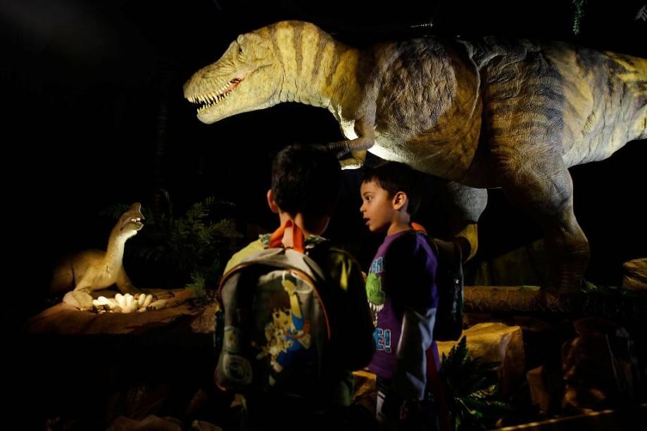 O Museu de História Natural é parada obrigatória para quem viaja com crianças e adolescentes