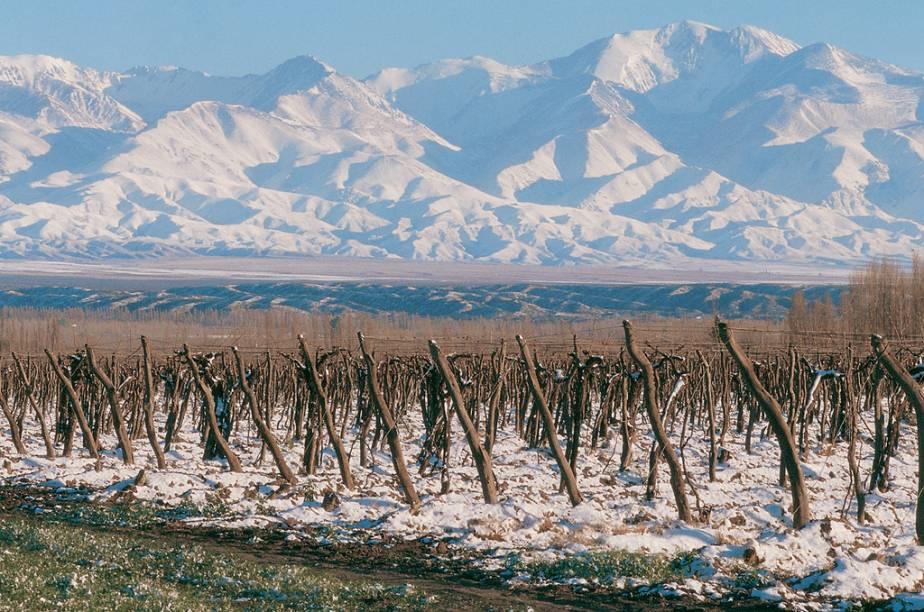 """<strong>Mendoza (Argentina):</strong><br />      Poucos lugares do mundo têm tantas opções para tomar um bom vinho no inverno do que <a href=""""http://viajeaqui.abril.com.br/cidades/ar-mendoza"""" rel=""""Mendoza"""" target=""""_blank"""">Mendoza</a>. Com mais de <a href=""""http://viajeaqui.abril.com.br/estabelecimentos/ar-mendoza-atracao-vinicolas-de-mendoza"""" rel=""""1200 vinícolas"""">1200 vinícolas</a>, caseira e industrais produzindo 10 milhões de hectolitros anuais, a região fixou-se como um destino ideal para quem gosta da bebida e também de neve.<br />      A autointitulada <em>Terra do Sol e do Bom Vinho </em>também é conhecida pelo <a href=""""http://viajeaqui.abril.com.br/estabelecimentos/ar-mendoza-atracao-tour-de-alta-montanha"""" rel=""""Cerro Aconcágua"""">Cerro Aconcágua</a>, a mais alta montanha do planeta fora da Ásia, cujos títulos como <em>Sentinela de Pedra </em>e <em>Teto das Américas </em>fazem jus aos seus imponentes 6.962 metros de altura. Conquistar seu cume é para poucos, mas apreciá-lo a partir do <a href=""""http://viajeaqui.abril.com.br/estabelecimentos/ar-mendoza-atracao-parque-provincial-aconcagua"""" rel=""""Parque Provincial Aconcágua"""">Parque Provincial Aconcágua</a>, em terreno bem firme, já é suficiente para deslumbrar os visitantes"""
