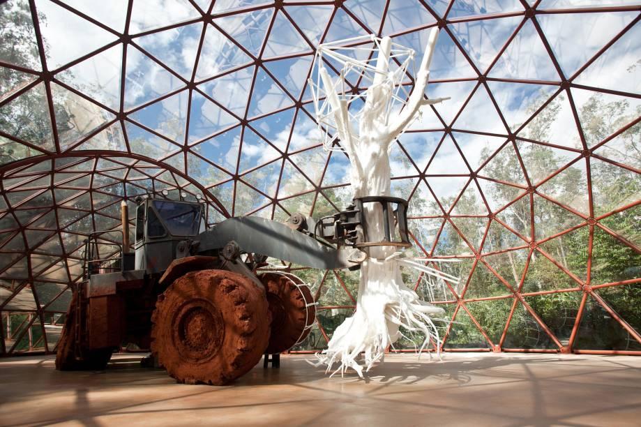 Cercado por um majestoso jardim botânico, com restaurantes, lanchonetes, monitores, limpeza e conservação impecáveis, o Instituto Inhotim em Brumadinho (MG) é o maior centro de arte contemporânea a céu aberto do mundo