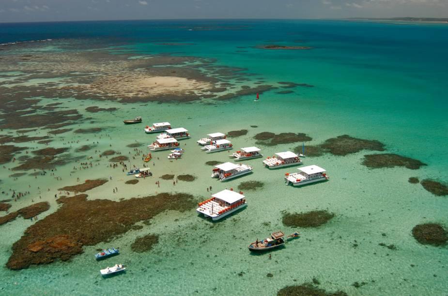 Os catamarãs são o veículo para o passeio principal de Maragogi: ver peixinhos coloridos se entrelaçando no recife de corais