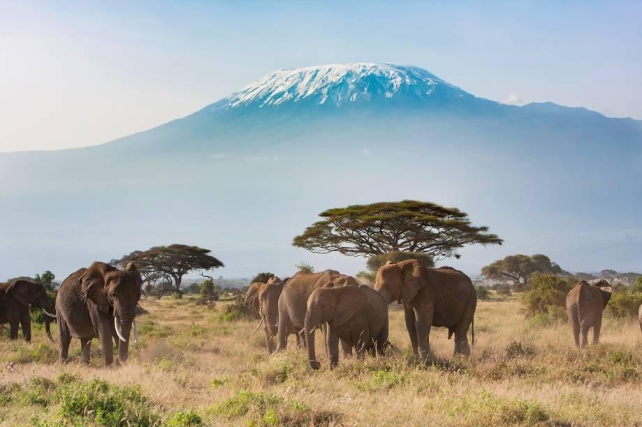 """<a href=""""http://viajeaqui.abril.com.br/paises/tanzania"""" target=""""_blank"""" rel=""""noopener""""><strong>Kilimanjaro, Tanzânia </strong></a> É a maior montanha do continente africano, com 5.895 metros. Três cones vulcânicos formam o Kilimanjaro: Kibo, o mais alto deles, Mawenzi (5.149 metros) e Shira (3.962 metros). Estima-se que sua última grande erupção foi há 360 mil anos, mas atividade vulcânica foi observada até o século 19 no Kili, o que o classifica como vulcão meramente adormecido – ainda saem gases da cratera, que podem causar avalanches e deslizamentos de terra. A origem de seu nome não é 100% segura, mas a teoria mais aceita é que seja uma mistura da palava suahili """"Kilima"""", que significa """"montanha"""" e a palavra kichagga """"Njaro"""", que pode ser traduzida como """"brancura"""". Essa brancura, porém, está acabando: 85% dos glaciares derreteram desde 1912 e estima-se que não haverá mais gelo em seu topo em 2022"""