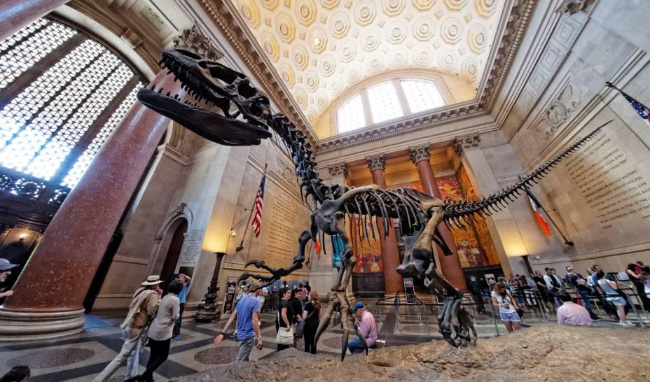 """Esqueletos de dinossauros, recintos que recriam com perfeição o habitat dos animais – com os próprios lá, empalhados –, um ótimo planetário (pago à parte) e toda a promoção hollywoodiana em cima do museu fizeram dele um must see das famílias com crianças em Nova York. A visita standard, que cobre as alas clássicas, segue o mesmo esquema de cobrança do Met.<strong>Pague """"o quanto quiser"""" diariamente, para ingressos adquiridos no local.</strong><em>(preço sugerido: US$ 23).</em>"""
