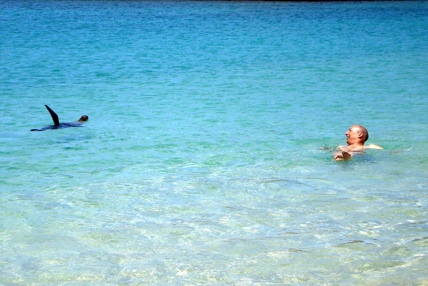 Turista nadando com leão-marinho em Galápagos