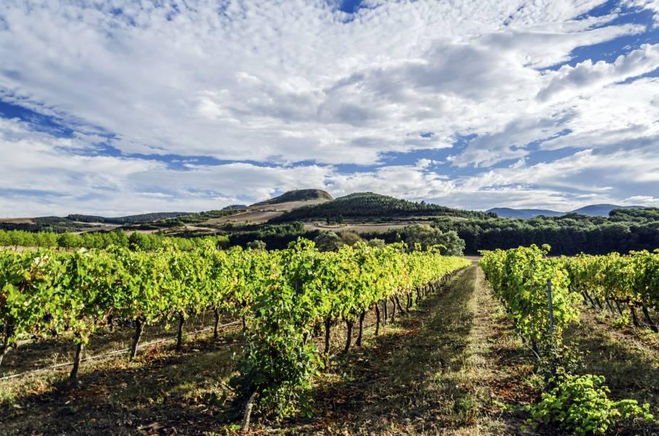 """<strong><a href=""""http://viajeaqui.abril.com.br/cidades/espanha-pais-basco-e-navarra"""" target=""""_self"""">Navarra</a>, <a href=""""http://viajeaqui.abril.com.br/paises/espanha"""" target=""""_self"""">Espanha</a></strong>Vales e montanhas marcam a bela paisagem da região. Por aqui, a cultura dos vinhos tem força desde o século 17, quando a bebida era um de seus principais produtos de exportação. A Tempranillo é considerada a cepa mais plantada da região, e produz vinhos bem encorpados. Entre os rosés, destaca-se os rótulos produzidos a partir de uvas Grenache<em><a href=""""http://www.booking.com/region/es/navarre.pt-br.html?aid=332455&label=viagemabril-vinicolas-da-europa"""" target=""""_blank"""" rel=""""noopener"""">Veja preços de hotéis em Navarra no Booking.com</a></em>"""