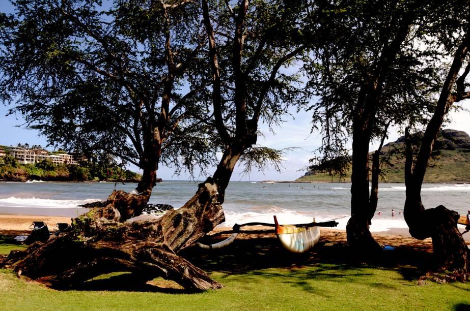 <strong>Kamehameha, o Rei do Havaí</strong><br />Cada ilha tinha um comando local, até o ano de 1810, quando Kamehameha centralizou o governo e instaurou a monarquia