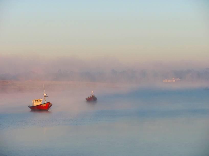 <em>Neptunia con niebla</em>, de Ney Peraza