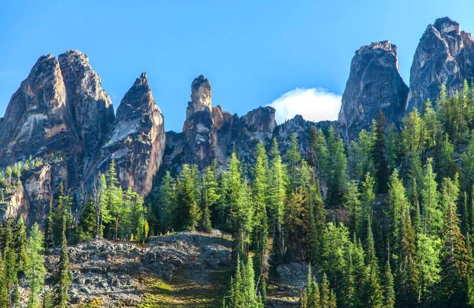 <strong>1. North Cascades National Park, em Washington</strong>    As águias, visitantes ilustres do lugar, dão um ar ainda mais selvagem às suas paisagens, localizadas a menos de três horas de Seattle.
