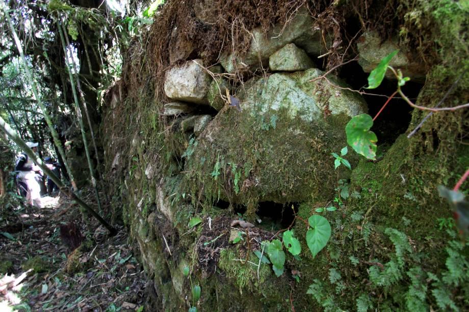 Novo trecho descoberto do Caminho Inca