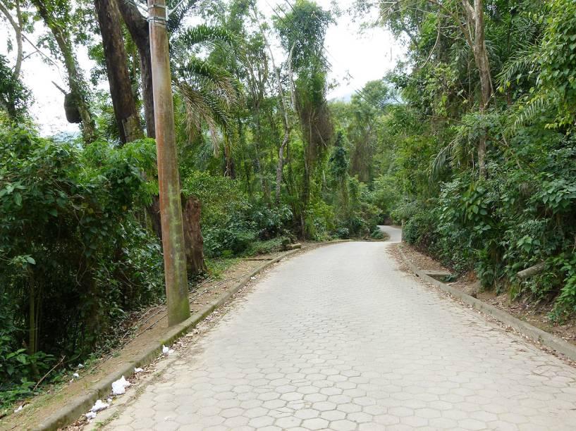 O início da estrada que corta o Parque Estadual de Ilhabela em direção à Praia de Castelhanos é pavimentado