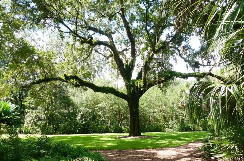 <strong>Bok Tower Gardens</strong>                                                            Para conhecer o jardim, reserve pelo menos duas horas. O passeio é feito à pé e o local tem uma leve inclinação. O ponto mais alto é a torre