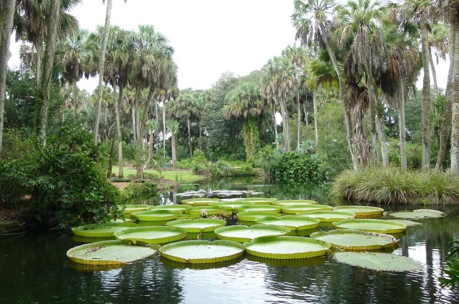<strong>Bok Tower Gardens</strong>                                                            O jardim foi fundado em 1929 e recebe visitas - a maioria de pessoas que vivem na região - em busca de momentos de paz e meditação