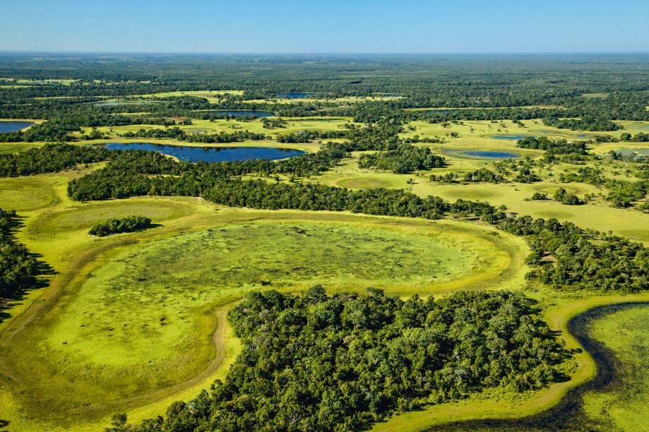 """<strong>Nhecolândia</strong><strong>–</strong><strong><a href=""""http://viajeaqui.abril.com.br/cidades/br-mt-pantanal"""" rel=""""Pantanal"""" target=""""_blank"""">Pantanal</a></strong>""""A região é forrada de lagoas arredondadas de água salgada, chamadas de salinas. O lugar é um santuário intocado, e o único jeito de vê-lo de perto é sobrevoando - na cidade de <a href=""""http://viajeaqui.abril.com.br/cidades/br-ms-aquidauana"""" rel=""""Aquidauana"""" target=""""_blank"""">Aquidauana</a>, dá para contratar os passeios aéreos. Todo mês de julho, eu e minha família vamos a algum lugar diferente no Pantanal, pois uma viagem para lá nunca é igual a outra"""""""