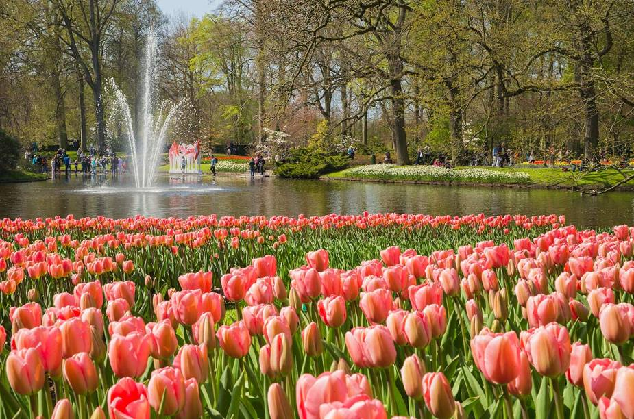 Em 2015, o parque Keukenhof, de Lisse, na Holanda, fica aberto até o dia 17 de maio