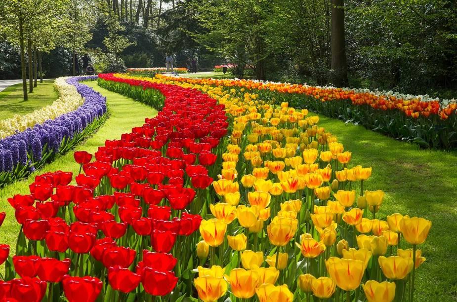 Em 2015, o tema do parque, que fica aberto até o dia 17 de maio, é Vincent van Vogh