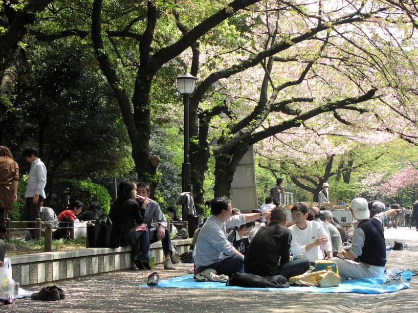 Toda primavera os japoneses se divertem bebendo cerveja e confraternizando sob as cerejeiras em flor. Na foto, o Parque Ueno