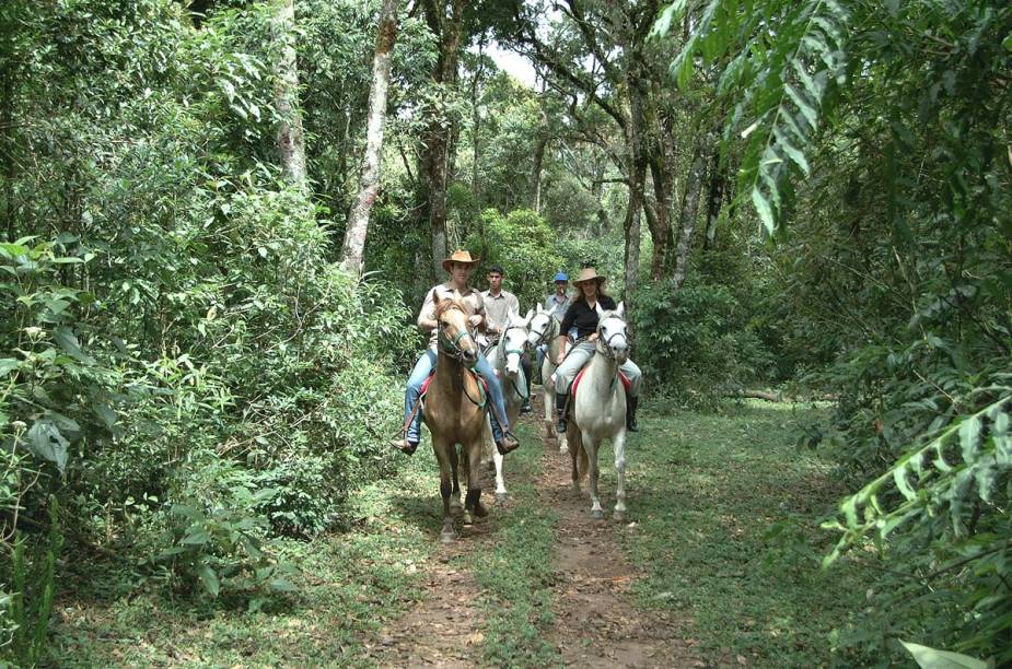 Algumas hospedagens organizam passeios a cavalo, como a Pousada dos Marchadores, que mantém um haras