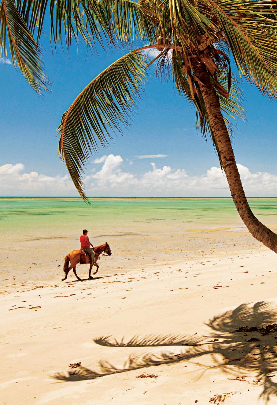 Praia Patacho, em São Miguel dos Milagres, Alagoas