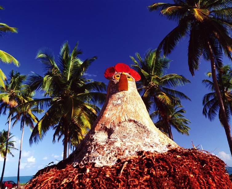 Os turistas não deixam de tirar fotos ao lado das galinhas esculpidas em tronco de coqueiro