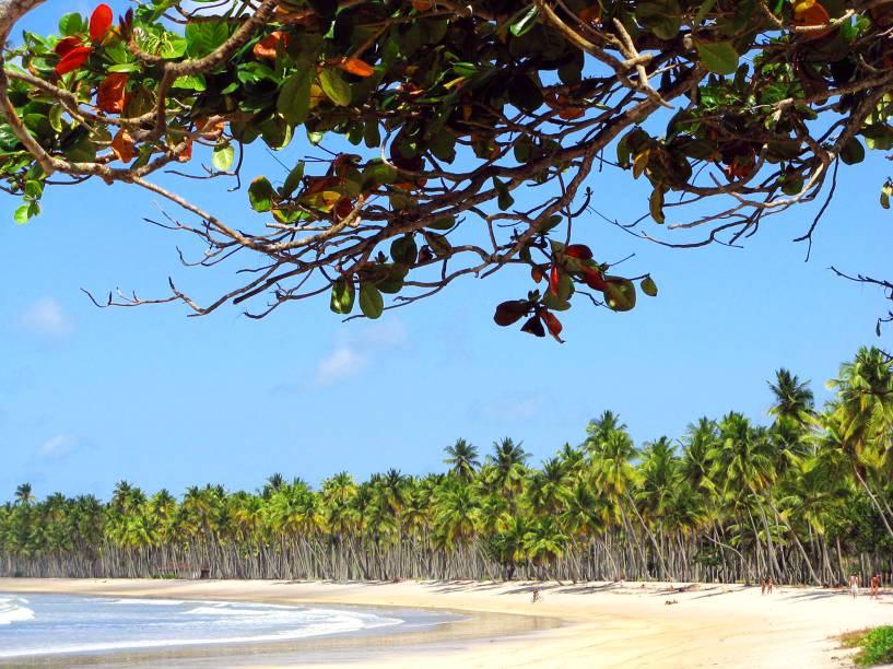"""<strong>Praia da Cueira, Ilha de Boipeba</strong> O mar tranquilo dá à praia o título de melhor trecho para banho em toda a Ilha de Boipeba. Ao longo de sua faixa de areia, fica a Barraca do Guido, que prepara a lagosta mais famosa da região. Costões e pedras ocupam as laterais da orla.<a href=""""https://www.booking.com/searchresults.pt-br.html?aid=332455&sid=605c56653290b80351df808102ac423d&sb=1&src=searchresults&src_elem=sb&error_url=https%3A%2F%2Fwww.booking.com%2Fsearchresults.pt-br.html%3Faid%3D332455%3Bsid%3D605c56653290b80351df808102ac423d%3Bclass_interval%3D1%3Bdest_id%3D900050228%3Bdest_type%3Dcity%3Bdtdisc%3D0%3Bfrom_sf%3D1%3Bgroup_adults%3D2%3Bgroup_children%3D0%3Binac%3D0%3Bindex_postcard%3D0%3Blabel_click%3Dundef%3Bno_rooms%3D1%3Boffset%3D0%3Bpostcard%3D0%3Braw_dest_type%3Dcity%3Broom1%3DA%252CA%3Bsb_price_type%3Dtotal%3Bsearch_selected%3D1%3Bsrc%3Dindex%3Bsrc_elem%3Dsb%3Bss%3DPraia%2520do%2520Espelho%252C%2520Bahia%252C%2520Brasil%3Bss_all%3D0%3Bss_raw%3DPraia%2520do%2520Espelho%3Bssb%3Dempty%3Bsshis%3D0%26%3B&ss=Ilha+de+Boipeba%2C+Bahia%2C+Brasil&ssne=Praia+do+Espelho&ssne_untouched=Praia+do+Espelho&city=900050228&checkin_monthday=&checkin_month=&checkin_year=&checkout_monthday=&checkout_month=&checkout_year=&group_adults=2&group_children=0&no_rooms=1&from_sf=1&ss_raw=Ilha+de+Boipeba&ac_position=0&ac_langcode=xb&dest_id=-678564&dest_type=city&place_id_lat=-13.6167&place_id_lon=-38.9333&search_pageview_id=32f5912e29a800a2&search_selected=true&search_pageview_id=32f5912e29a800a2&ac_suggestion_list_length=5&ac_suggestion_theme_list_length=0"""" target=""""_blank"""" rel=""""noopener""""><em>Busque hospedagens na Ilha de Boipeba</em></a>"""