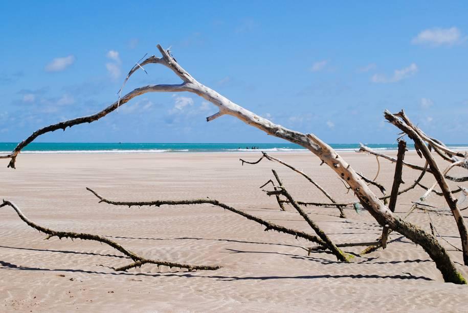 """É na <a href=""""http://viajeaqui.abril.com.br/estabelecimentos/br-al-maceio-atracao-praia-paripueira"""">praia de Paripueira</a>que começam os bancos de corais que chegam até Recife, no Pernambuco. Essa característica faz da praia uma das mais tranquilas de Alagoas – a barreira protege os banhistas das ondas fortes"""