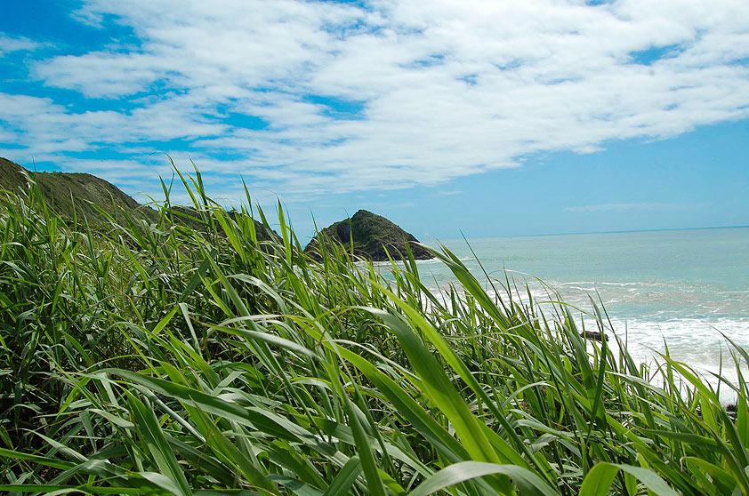 Praia Vermelha na cidade de Penha, Santa Catarina
