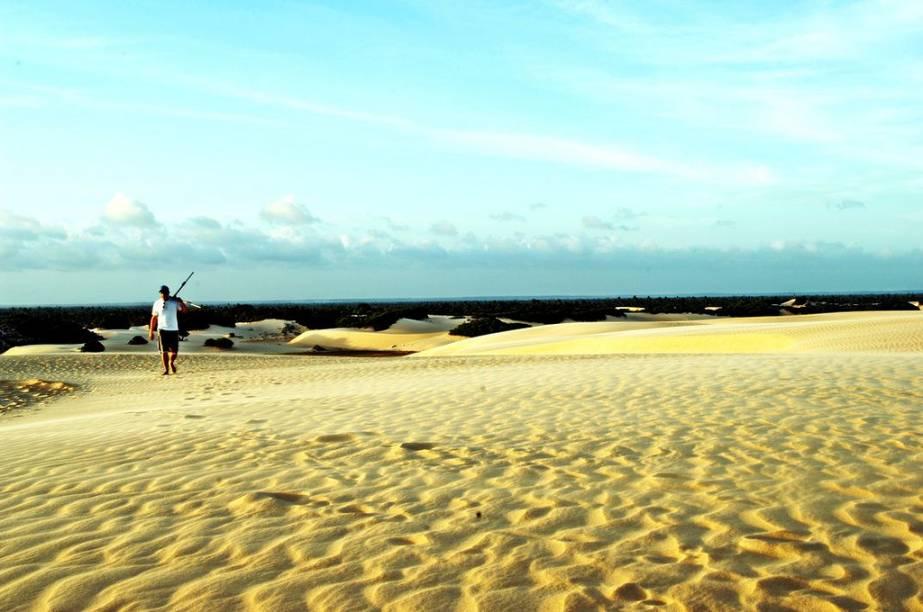 """<strong>12. <a href=""""http://viajeaqui.abril.com.br/estabelecimentos/br-al-penedo-atracao-praia-do-peba"""" rel=""""Praia do Peba (AL)"""" target=""""_blank"""">Praia do Peba (AL)</a></strong>    Localizada no município de Piaçabuçu, a <a href=""""http://viajeaqui.abril.com.br/estabelecimentos/br-al-penedo-atracao-praia-do-peba"""" rel=""""Praia do Peba"""" target=""""_self"""">Praia do Peba</a> é uma praia selvagem, deserta, formada em sua maior parte por cerca de 21 quilômetros de dunas. Trata-se de uma vila de pescadores com quase nenhuma estrutura turística, mas vale a pena passear por lá para conferir o nascer ou o pôr do sol. As dunas alcançam 40 metros de altura e, entre os meses de maio e setembro, emolduram lagoas que se formam nos baixios do terreno. O local serve como ponto de desova de tartarugas-marinhas"""