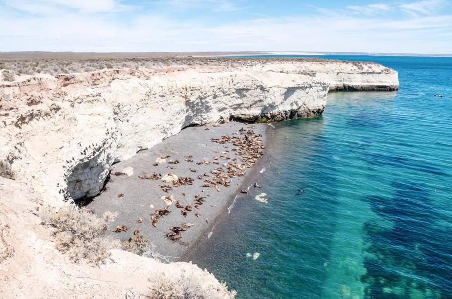 "<strong>Península Valdés- <a href=""http://viajeaqui.abril.com.br/paises/argentina"" target=""_blank"">Argentina</a></strong>"