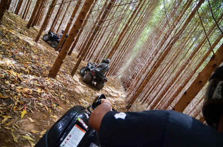 O passeio de quadriciclo na Fazenda Radical (onde está a Megatirolesa) tem um percurso de 13 quilômetros em meio a uma floresta de eucaliptos