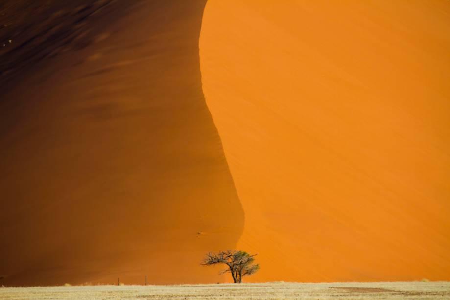 """<a href=""""http://teresaperez.com.br/"""" rel=""""TERESA PEREZ"""" target=""""_blank""""><strong>TERESA PEREZ</strong></a><strong>O QUE ELA FAZ POR VOCÊ</strong>Leva para a Namíbia com luxo.<strong>PACOTE</strong>Após o pernoite em Windhoek, são nove noites entre Sossusvlei (foto), com safáris fotográficos, Skeleton Coast, região inóspita onde carcaças de navios e esqueletos de mamíferos se misturam às dunas; e Serra Cafema, terra do secular povo Himba. Em hotéis top com pensão completa, sai a US$ 9 843 (s/ aéreo)."""
