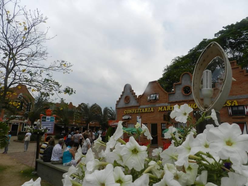 Apesar de ter cerca de 11 mil habitantes apenas, a cidade de Holambra corresponde a 50% das vendas do setor de floricultura
