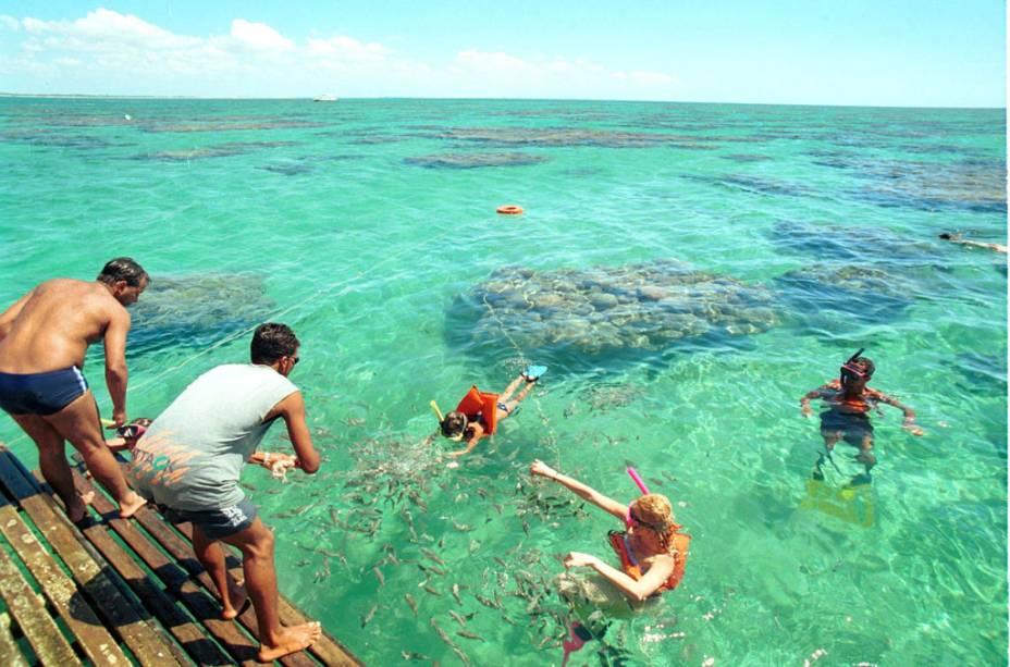 As piscinas naturais de Maracajaú, a 57 km de Natal, estão entre as mais bonitas do país