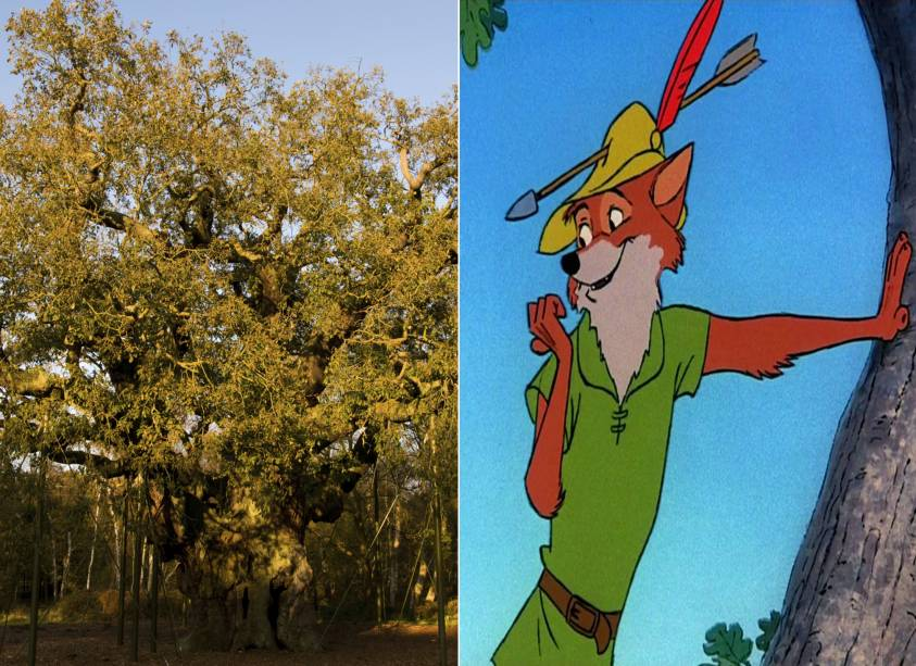 """<strong>Floresta de Sherwood, Nottingham, <a href=""""http://viajeaqui.abril.com.br/paises/reino-unido?iframe=true"""" rel=""""Reino Unido"""" target=""""_self"""">Reino Unido</a> (<em>Robin Hood)</em></strong>        A lenda do ladrão, que roubava dos ricos para dar aos pobres, também foi abordada pelo estúdio. A floresta na qual o herói teria vivido, na época do reinado de Ricardo Coração de Leão, é constantemente visitada por turistas, sobretudo na época do festival temático, com atividades como arco e flecha e apresentações de música. O desenho, é claro, não poderia ser mais divertido        <em><a href=""""http://www.booking.com/city/gb/nottingham.pt-br.html?aid=332455&label=viagemabril-destinos-inspiradores-dos-estudios-disney"""" rel=""""Veja preços de hotéis em Nottingham no Booking.com"""" target=""""_blank"""">Veja preços de hotéis em Nottingham no Booking.com</a></em>"""