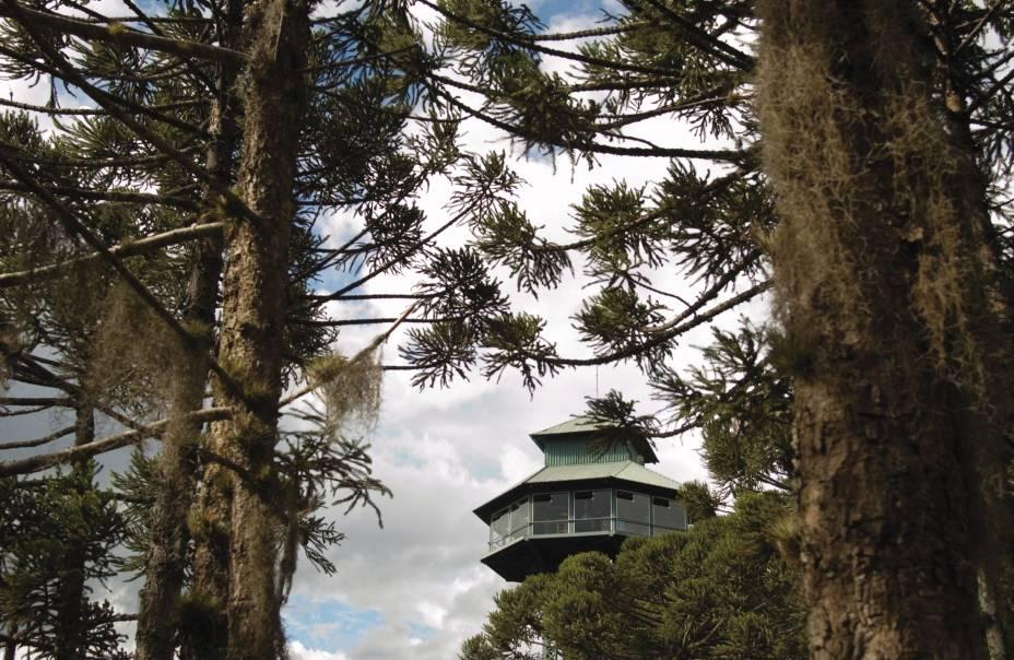 O Observatório Ecológico oferece uma visão de 360º do Parque do Caracol em Canela (RS). Há binóculos para observar a fauna e a flora além de uma vista deslumbrante da Cascata do Caracol