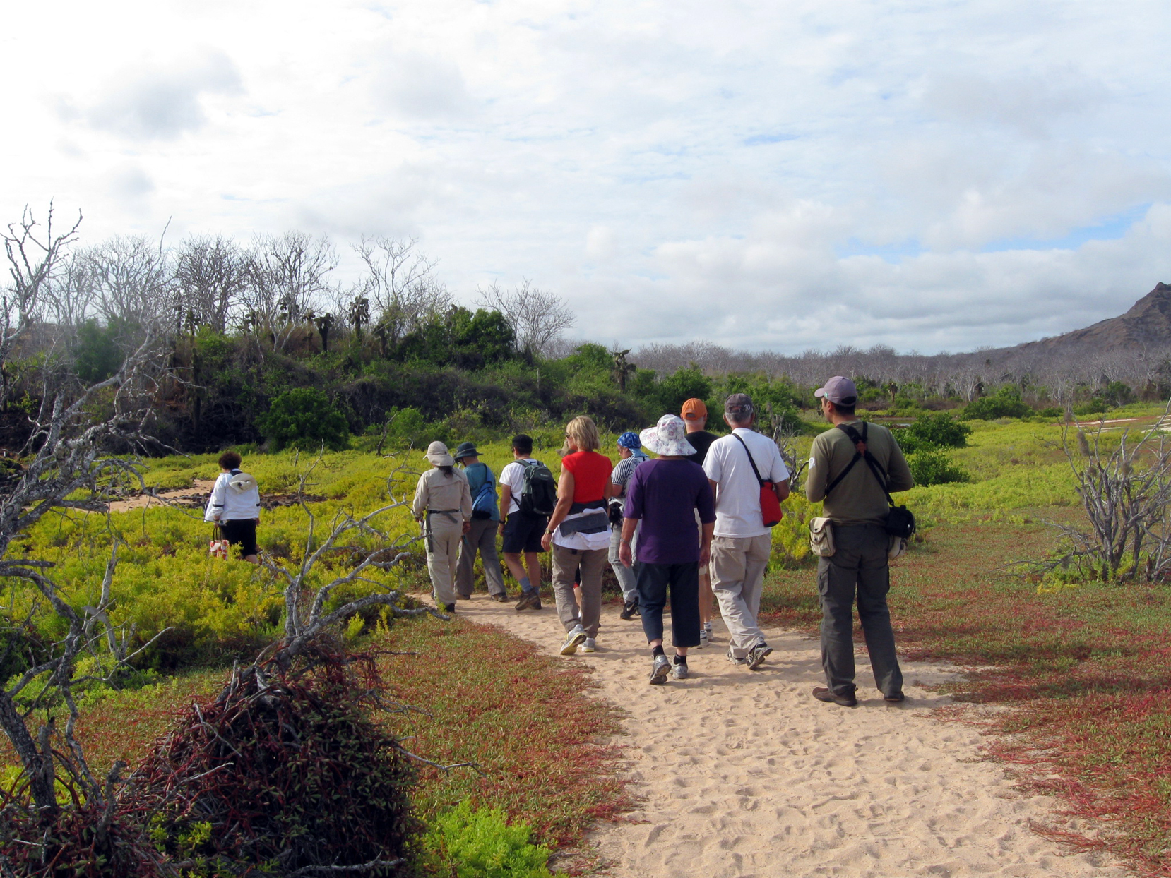 Trilha em Santa Cruz, uma das ilhas onde você pode se hospedar em Galápagos, Equador