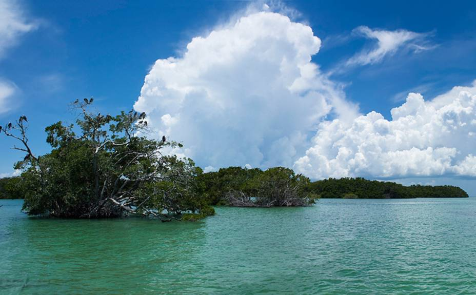 "<strong>7. Reserva da Biosfera Sian Kaan</strong>Aqui o turismo é comandado pela comunidade local: os maias da região organizam <a href=""http://www.siankaantours.org"" target=""_blank"" rel=""noopener""><strong>excursões e passeios </strong></a>"